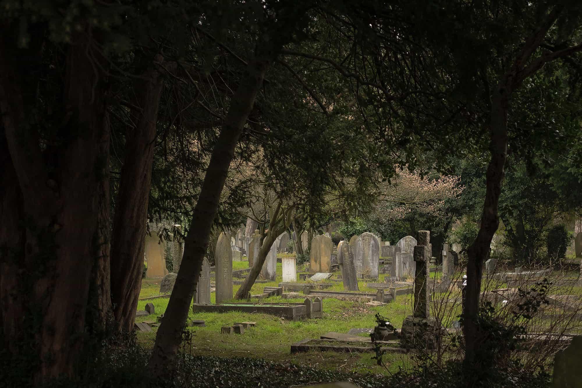 graves-light