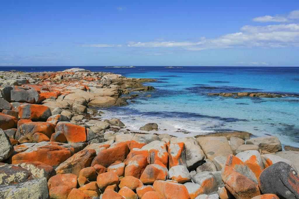 Bay of Fires, Tasmania. Credit: Diego Delso on Wikimedia Commons